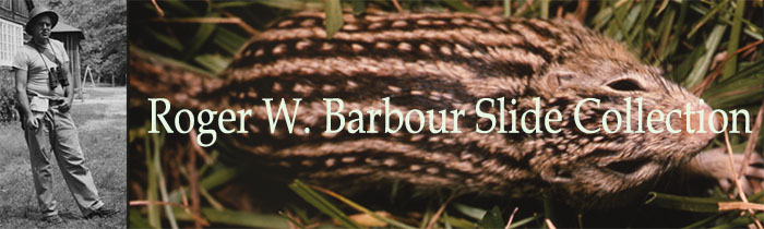Roger W. Barbour Slide Collection