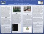 Catalogue Of Lichen Species In The Rowan County Sphagnum Swamp, Rowan County, Kentucky by DeAnna Kidd and Allen Risk