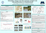 Fall And Rise: Changes In The Fish Community Of Triplett Creek Following Restoration Of A Channelized Reach