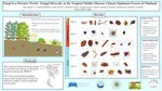 Fungi In A Warmer World Fungal Diversity In The Tropical Middle Miocene Climate Optimum Forests Of Thailand