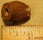 Minie Ball- B1038