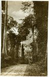 A Forest Road in Ashanti No. 24 by Methodist Book Depots