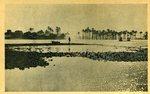 Cairo - River Nile
