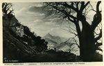 Cheren - La Strada del Dongolas per Agordat - Un Baobab