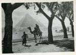 Cairo - The Pyramids