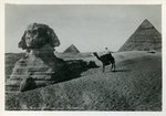 Cairo - The Great Sphinx and Pyramids