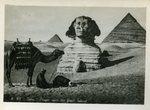 Cairo - Prayer near the Great Sphinx