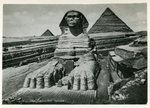 Cairo - The Excavated Sphinx