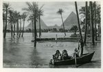 Cairo - Nature Scene during the Inundation