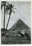 Cairo - The Chefren Pyramid