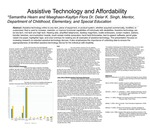 Assistive Technology and Affordability