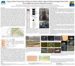 Organic Matter Preservation in Paleocene Rocks at MoSU ridge in McKinney Roughs Nature Park: New Insights into Ancient Wetland Ecosystems
