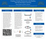 Creating a Circular Chromosome in the Building Yeast Saccharomyces cerevisiae by Ethan Chandler and Melissa Mefford