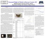 Seasonal Flight of Moths in Rowan County, Kentucky
