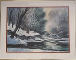 Forest Stream in the Winter